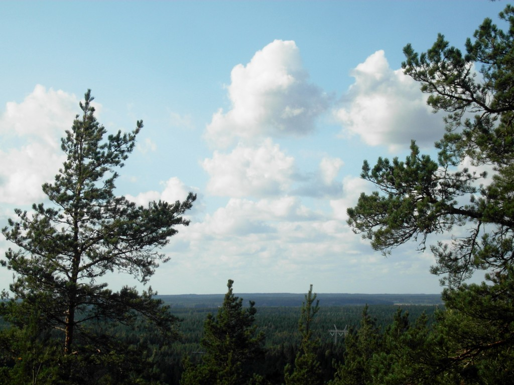 """View from Bötombergen, our """"mountain"""" which proudly rises 115 m above the sea level :)"""