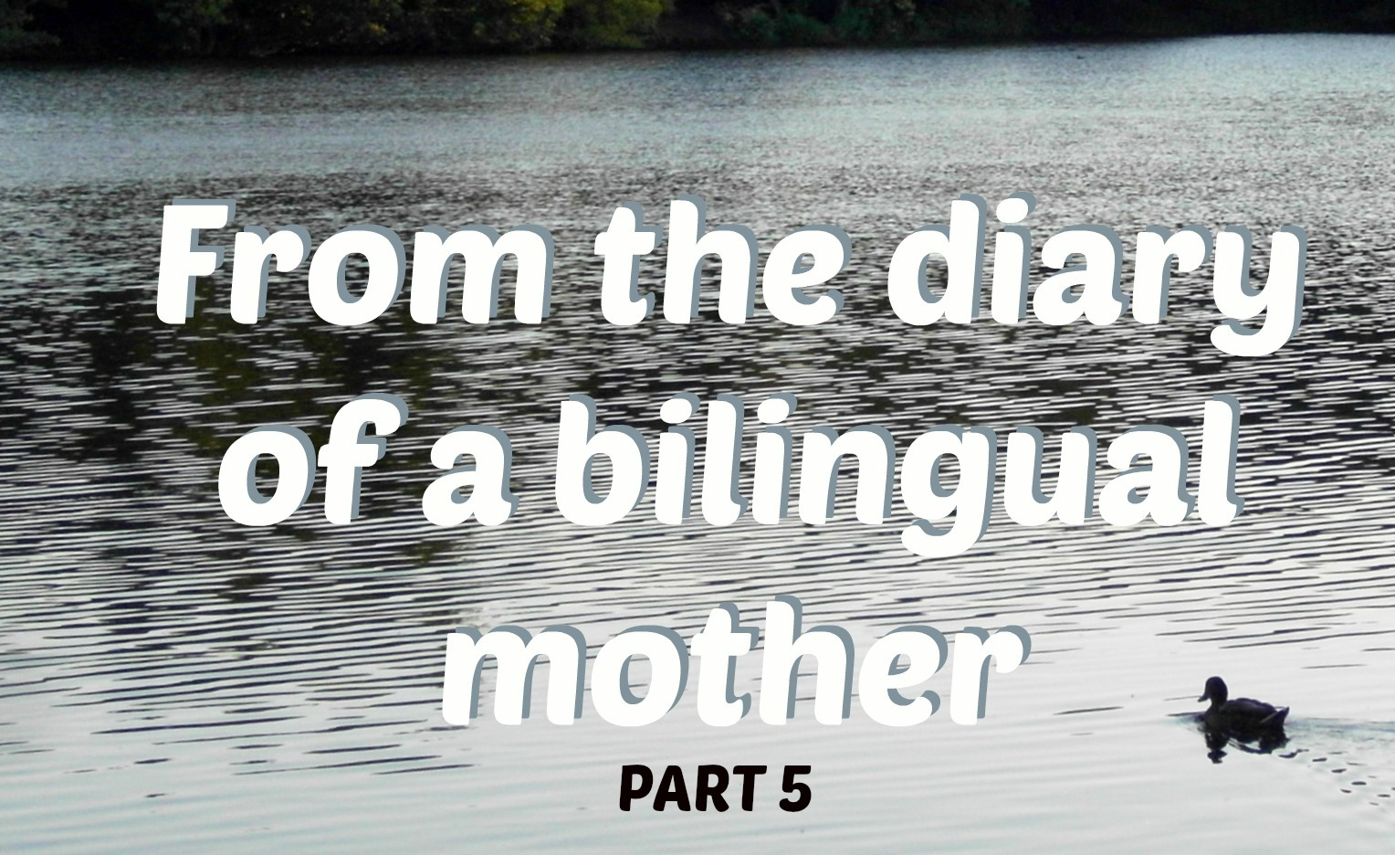 From the diary of a bilingual mother, part 5