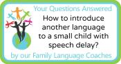 Q&A: How to introduce another language to a small child with speech delay?