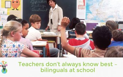 Teachers don't always know best – bilinguals at school