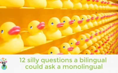 12 silly questions a bilingual could ask a monolingual