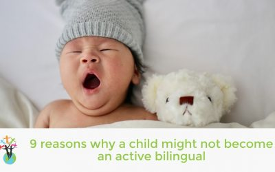 9 reasons why a child might not become an active bilingual