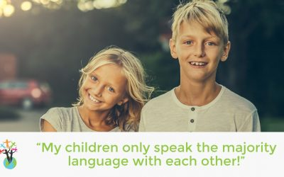 """""""My children only speak the majority language with each other!"""""""
