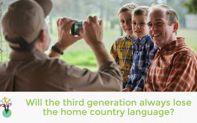 Will the third generation always lose the home country language?